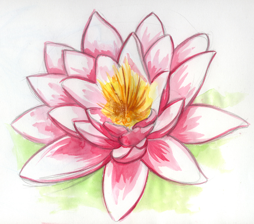 Langage et saveur des fleurs - Photo de fleur a dessiner ...